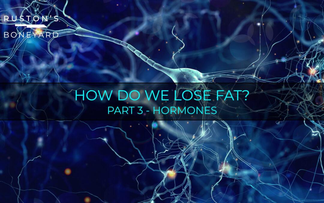 How Do We Lose Fat? Part 3 Hormones