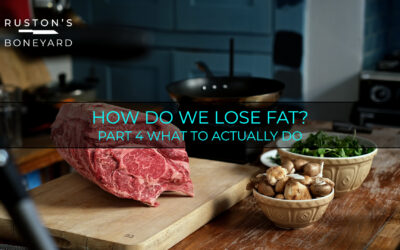 How Do We Lose Fat? Part 4 What To Actually Do